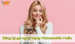 Gói cước gọi ngoại mạng Vietnamobile 1 tuần